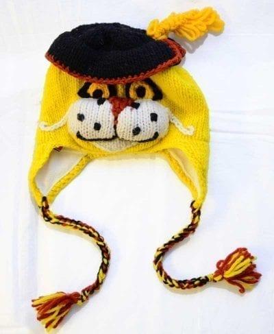 cat animal hat
